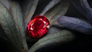 rubin, ruby, edelsteine, gemstones, korund, juwelen, rubinschmuck, rubinring, juwelen, juwelier, goldschmiede, sahak, jewellery, limmatquai, zurich